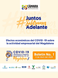 informe_impacto_covid_07-4-20_crr-1.png